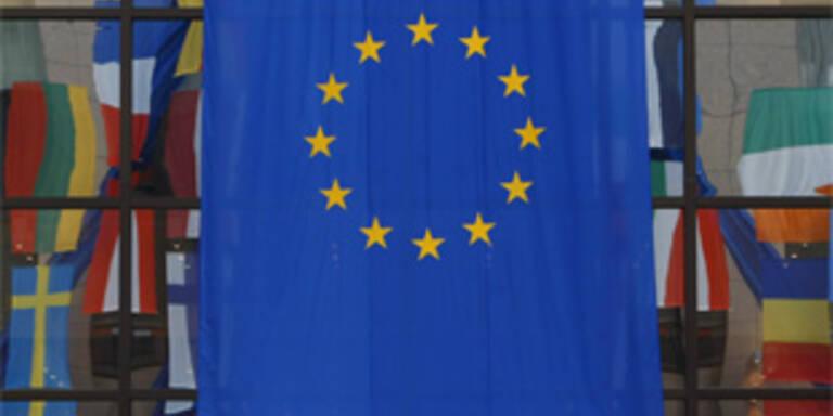 Europa-Gegner setzen auf Wahlbündnis
