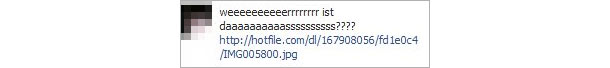 facebook_trojaner_aug_2012.jpg