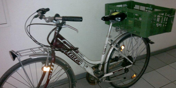 Fahrrad Rekord-Dieb