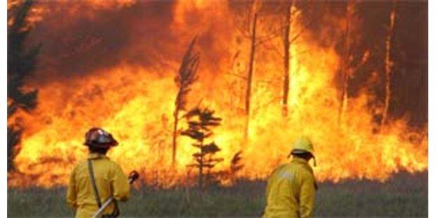 Etwa 100 Tote bei Brand an Öl-Pipeline in Nigeria