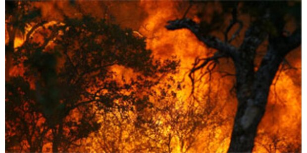 Waldbrand in der Türkei forderte Todesopfer