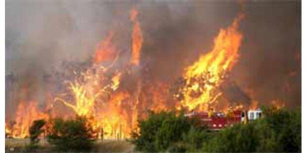 Zwei Brandstifter wegen
