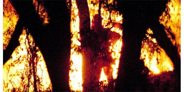 Feuersbrunst wütet Down Under