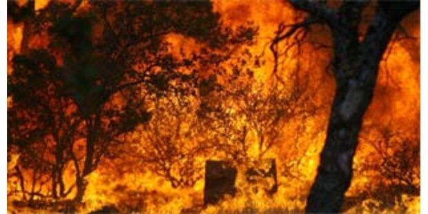 Wieder Waldbrände in Kalifornien