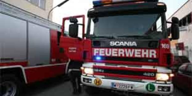 Toter bei Brand in Wiener Kleingartenhaus