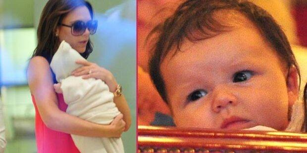 Baby Harper: 1. Auftritt bei Fashion Week