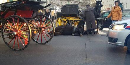 Fiaker-Pferd brach vor Touristen zusammen