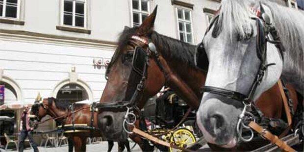 Fiaker rammte zwei Autos in Wiener City