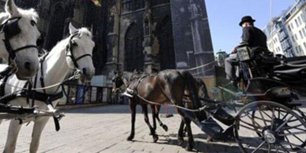 Zwei Pferde bei Fiakerunfall leicht verletzt