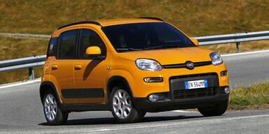 Fiat plant Kompakt-SUV im Panda-Look