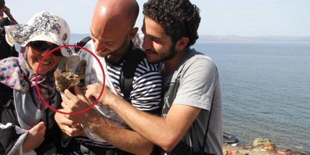 Flüchtling brachte Kätzchen mit