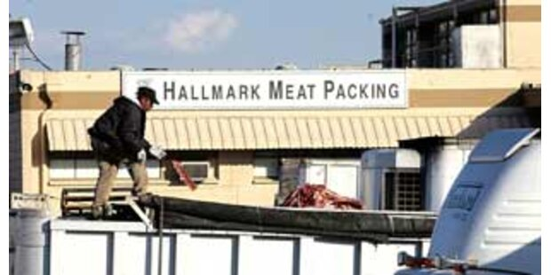 USA starten größte Fleischrückholung aller Zeiten