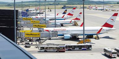 Terror-Alarm: Auto legt Flughafen lahm