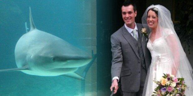 Flitterwochen: Hai zerfleischt Briten