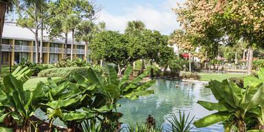 Florida will Olympia von Tokio übernehmen