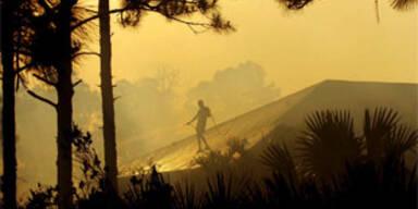 Millionenschäden nach Waldbränden in Florida