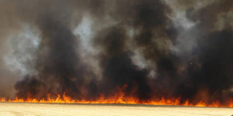 82-Jährige starb bei Flurbrand in Limbach