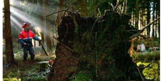 Bauer bei Waldarbeiten verunglückt