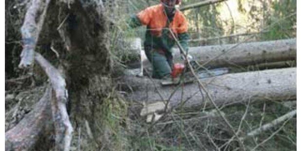 Schwere Verletzung bei Waldarbeiten im Burgenland