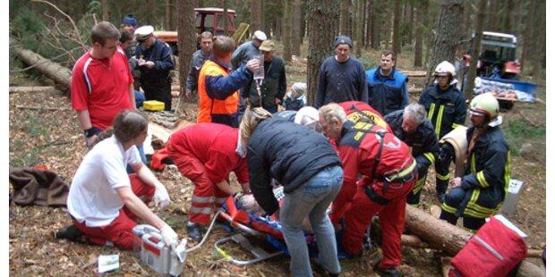 Mann starb bei Forstunfall im Bezirk Horn