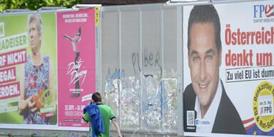 FP & Grüne droht Strafe wegen Plakate