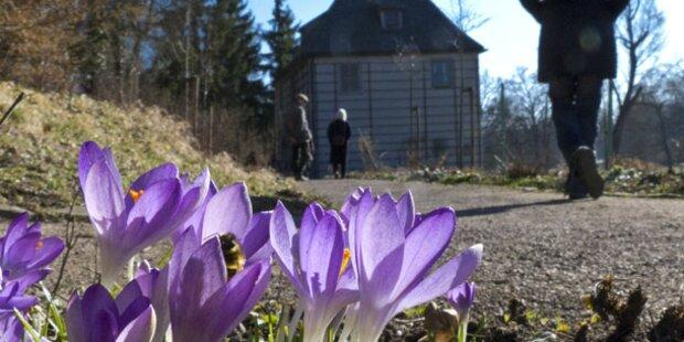 Jetzt kommt der Frühling