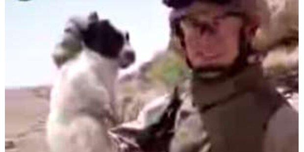 US-Soldaten werfen kleinen Hund in eine Schlucht