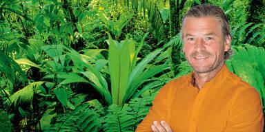 Zieht Frenkie Schinkels ins RTL-Dschungelcamp?