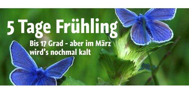 17 Grad: Frühling gastiert in Österreich