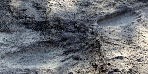 25.000 Jahre alte Fußabdrücke entdeckt