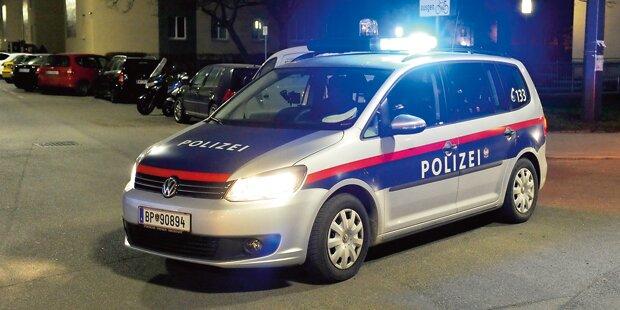 Alkoholisierter verletzt zwei Polizisten
