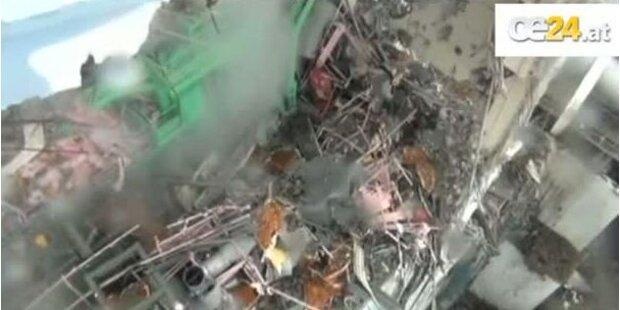 Fukushima - Kraftwerk zerbröselt