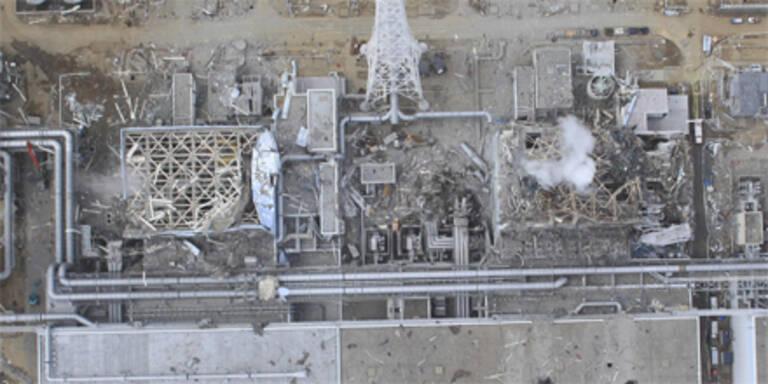 Meer vor Fukushima total verstrahlt