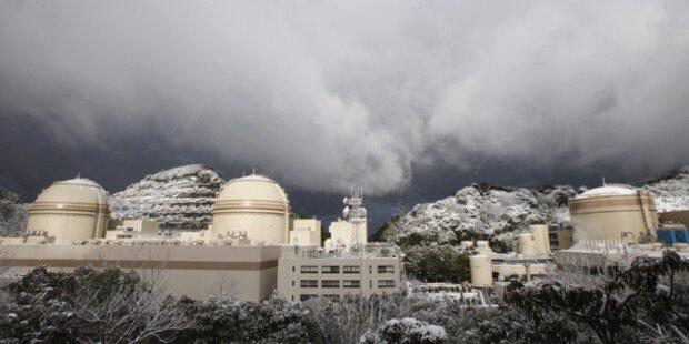 Starkes Erdbeben erschüttert Fukushima