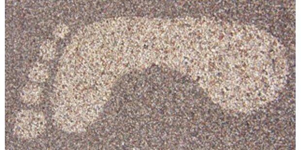 Testen Sie Ihren ökologischen Fußabdruck