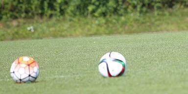 SK Rapid Wien gegen SV Grödig