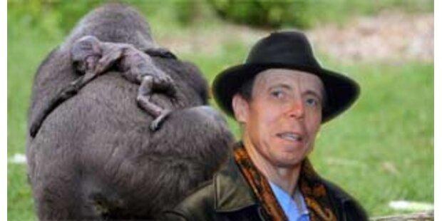 Dr. Tod will das tote Gorilla-Baby