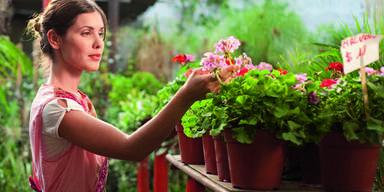 Garten oflanzen