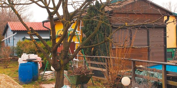 Ehepaar in Gartenhaus tot entdeckt