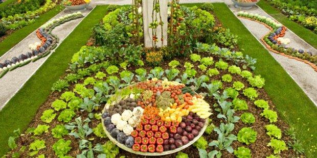 Österreichs größter Gartenevent in Tulln