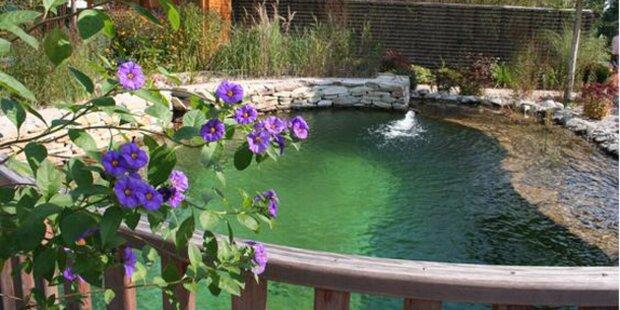 Stilvolles leben im eigenen garten for Garten pool tulln