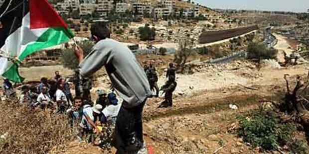 Palästina gegen Israel im Sicherheitsrat