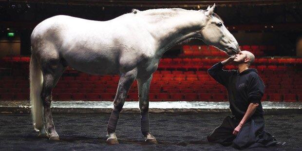 In Salzburg tanzen Pferde um Mozart