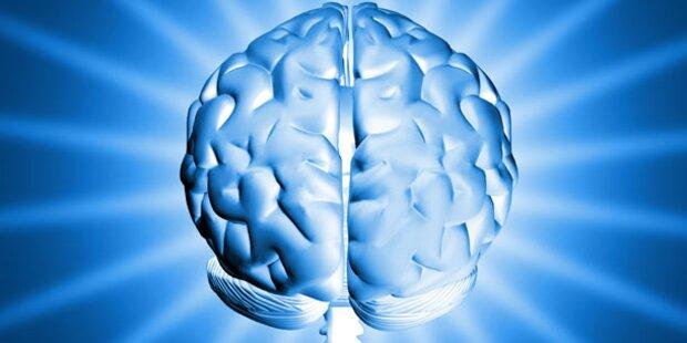 5 Tipps um ihr Gedächtnis auf Vordermann zu bringen