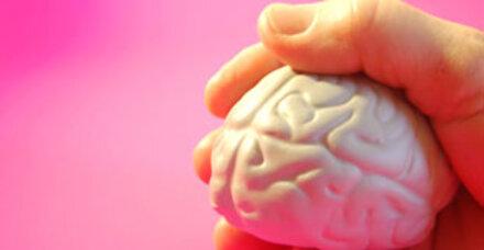 Gehirn schrumpft ab dem 18. Lebensjahr