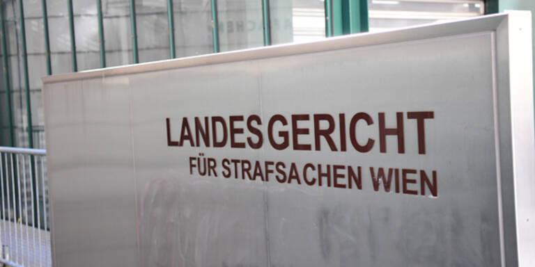Zwei Jahre Haft für Wiener Heimhelferin