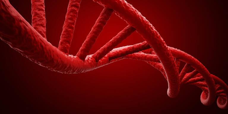 Viel zu wenige Stammzellenspender