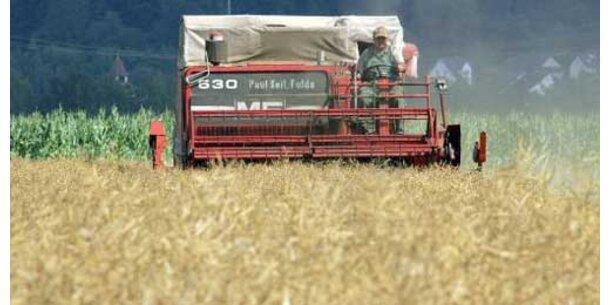 IWF warnt vor Welthunger