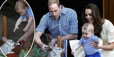 Herzogin Kate & Prinz William besuchen Taronga Zoo