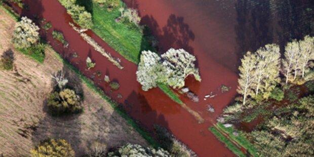 Regen spült Gift in die Donau